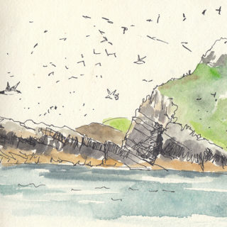 guano-rock-skomer-crop